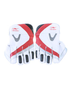 gecko-cricket-products-71