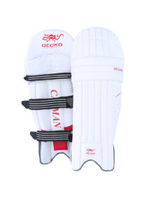 gecko-cricket-products-76