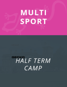 gecko-half-term-multisport-1