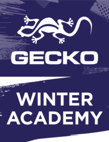 gecko-webbuttons-winter-acad-540x700